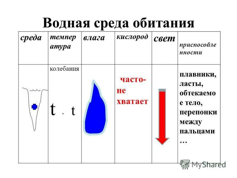 среда температура влага кислород свет приспособленности колебания t - t часто- не хватает плавники, ласты, обтекаемо е тело, перепонки между пальцами … Водная среда обитания