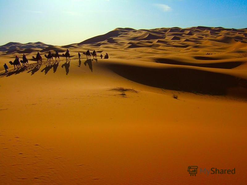 Camel Riding in Morocco Enjoy a relaxing journey on a camel across the desert in Marrakech with its historic sites. Visit traditional Berber villages. Relax on the beautiful beaches at Essaouira. Morocco is much more than sand because it has many var