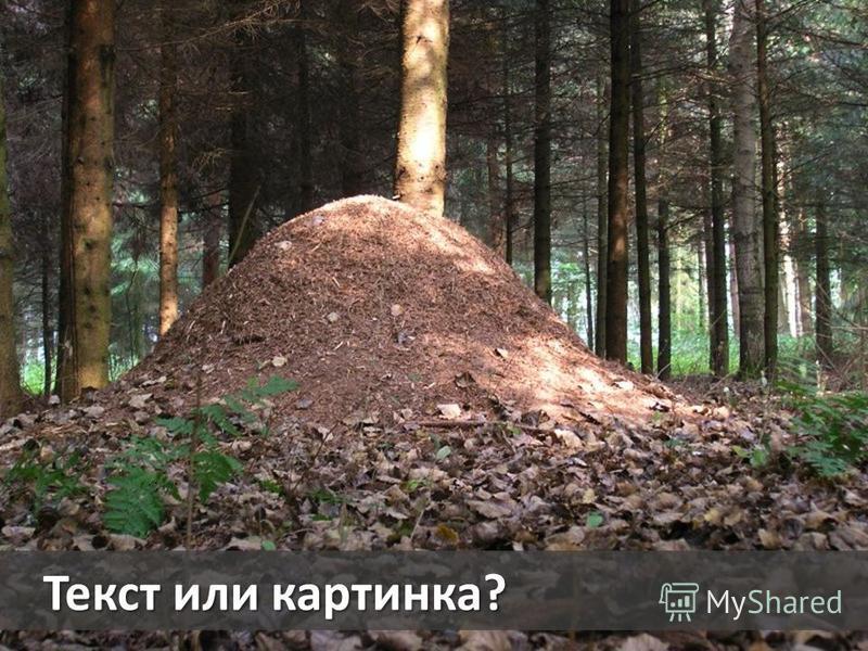 Текст или картинка?