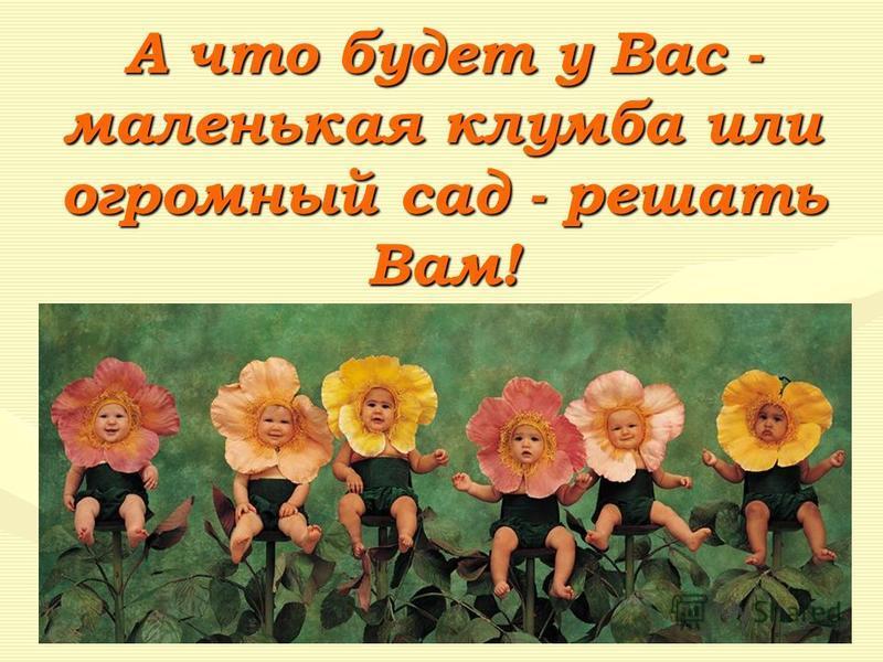 А что будет у Вас - маленькая клумба или огромный сад - решать Вам!