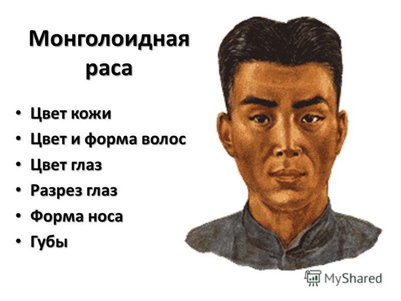 Цвет кожи Цвет кожи Цвет и форма волос Цвет и форма волос Цвет глаз Цвет глаз Разрез глаз Разрез глаз Форма носа Форма носа Губы Губы Монголоидная раса