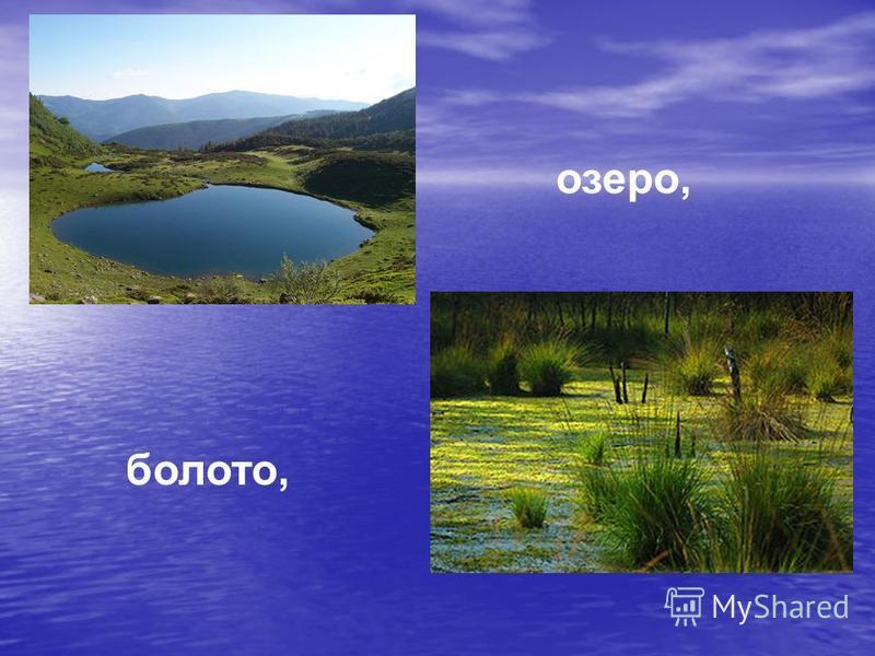 озеро, болото,