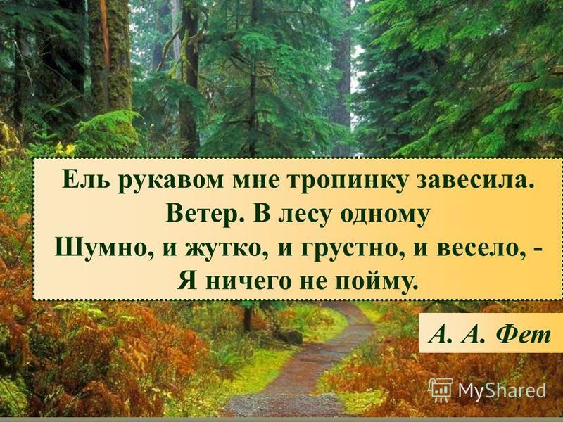 Ель рукавом мне тропинку завесила. Ветер. В лесу одному Шумно, и жутко, и грустно, и весело, - Я ничего не пойму. А. А. Фет