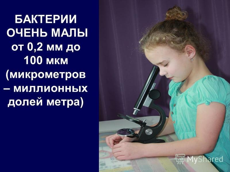 БАКТЕРИИ ОЧЕНЬ МАЛЫ от 0,2 мм до 100 мкм (микрометров – миллионных долей метра)