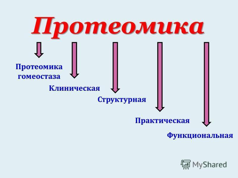 Протеомика