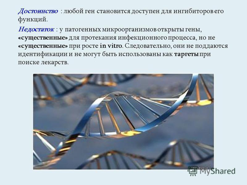 Достоинство : любой ген становится доступен для ингибиторов его функций. Недостаток : у патогенных микроорганизмов открыты гены, «существенные» для протекания инфекционного процесса, но не «существенные» при росте in vitro. Следовательно, они не подд