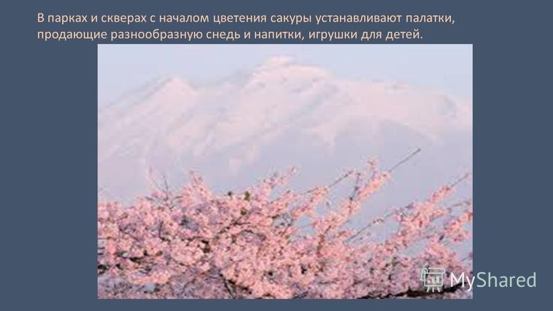 В парках и скверах с началом цветения сакуры устанавливают палатки, продающие разнообразную снедь и напитки, игрушки для детей.