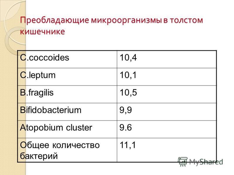 Преобладающие микроорганизмы в толстом кишечнике C.coccoides10,4 C.leptum10,1 B.fragilis10,5 Bifidobacterium9,9 Atopobium cluster9.6 Общее количество бактерий 11,1