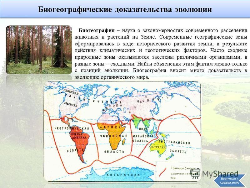 Биогеографические доказательства эволюции Биогеография – наука о закономерностях современного расселения животных и растений на Земле. Современные географические зоны сформировались в ходе исторического развития земли, в результате действия климатиче