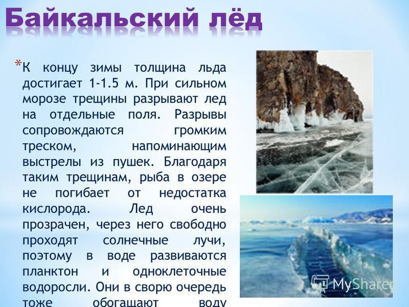 * К концу зимы толщина льда достигает 1-1.5 м. При сильном морозе трещины разрывают лед на отдельные поля. Разрывы сопровождаются громким треском, напоминающим выстрелы из пушек. Благодаря таким трещинам, рыба в озере не погибает от недостатка кислор