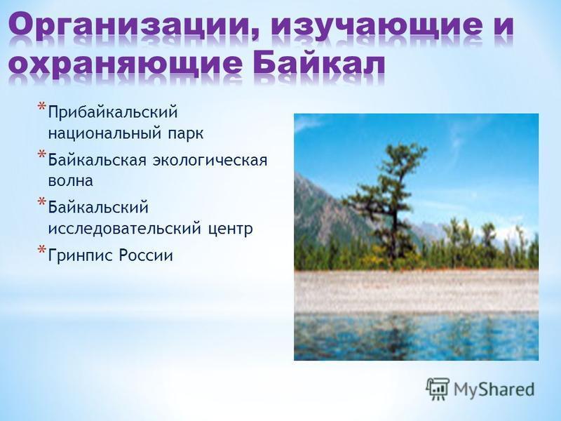 * Прибайкальский национальный парк * Байкальская экологическая волна * Байкальский исследовательский центр * Гринпис России