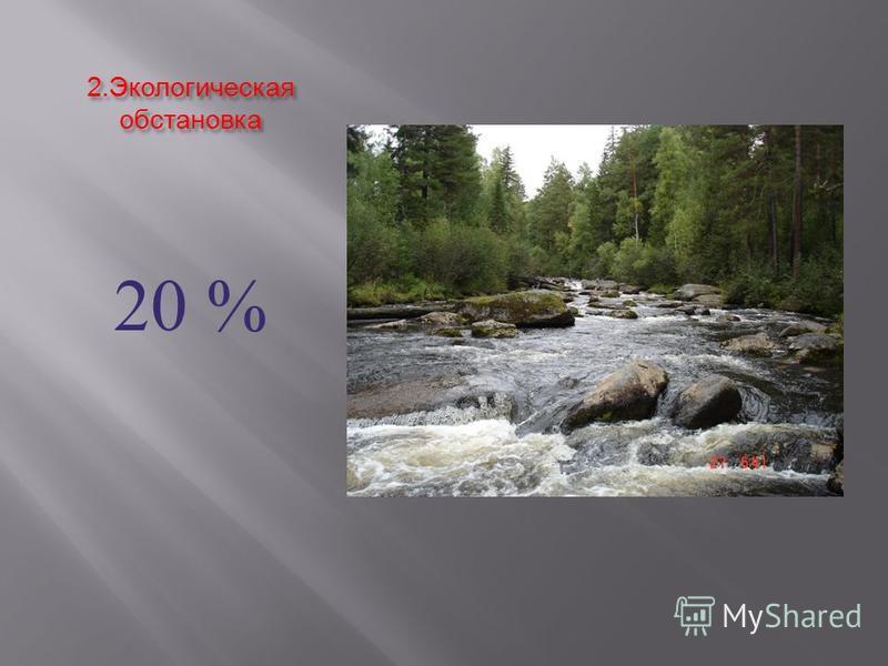 2. Экологическая обстановка 20 %