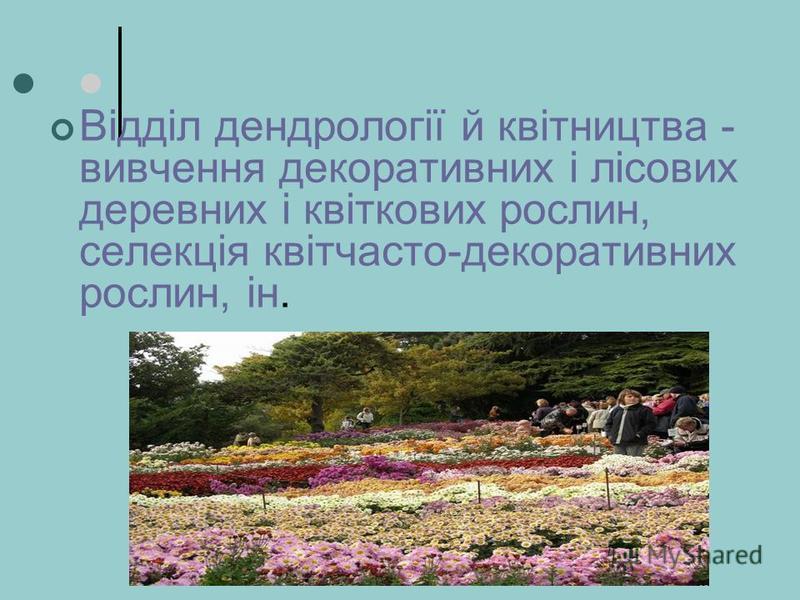 Відділ дендрології й квітництва - вивчення декоративних і лісових деревних і квіткових рослин, селекція квітчасто-декоративних рослин, ін.