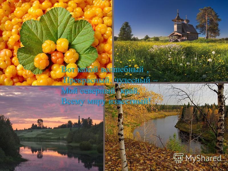 Вот какой волшебный, Прекрасный, чудесный – Прекрасный, чудесный – Мой северный край, Всему миру известный !