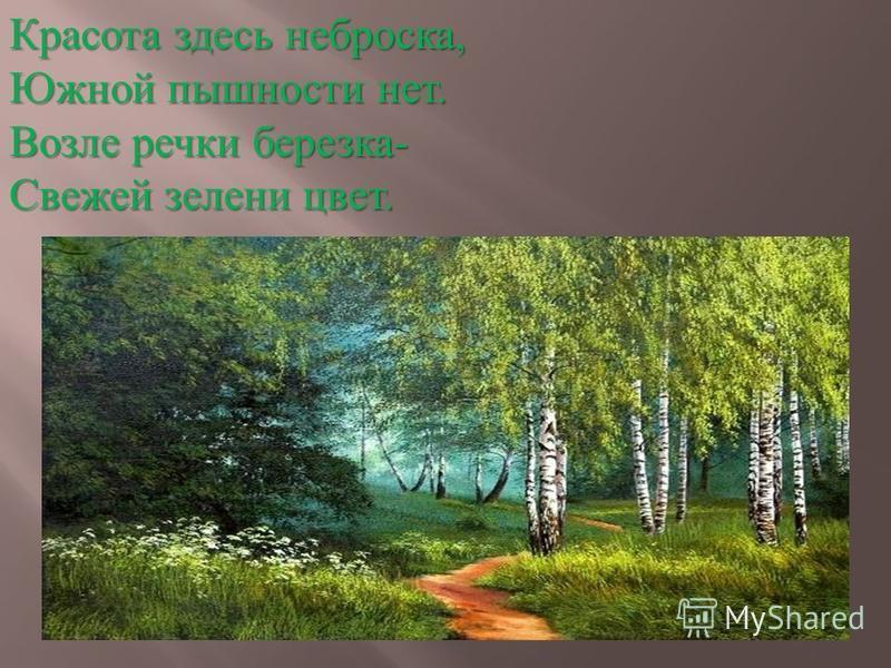 Красота здесь неброска, Южной пышности нет. Возле речки березка- Свежей зелени цвет.