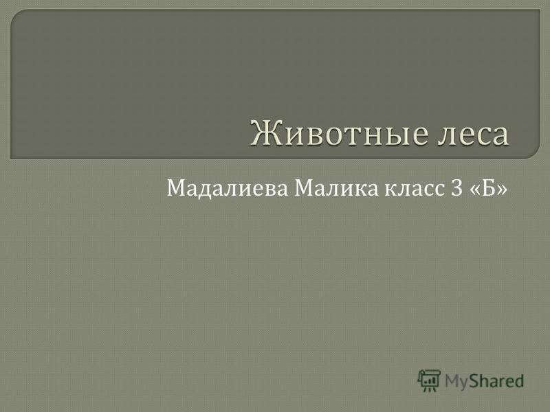 Мадалиева Малика класс 3 « Б »