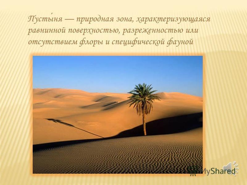 Пустыня Выполнила: ученица 4 класса ГБОУ начальная школа-детский сад 437 Кучерова Елизавета