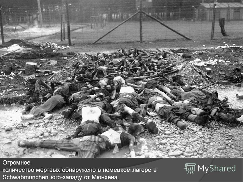 Огромное количество мёртвых обнаружено в немецком лагере в Schwabmunchen юго-западу от Мюнхена.