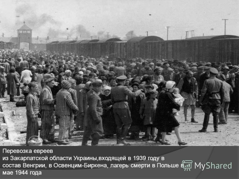Перевозка евреев из Закарпатской области Украины,входящей в 1939 году в состав Венгрии, в Освенцим-Биркена, лагерь смерти в Польше в мае 1944 года