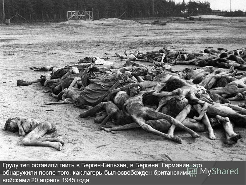 Груду тел оставили гнить в Берген-Бельзен, в Бергене, Германии, это обнаружили после того, как лагерь был освобожден британскими войсками 20 апреля 1945 года