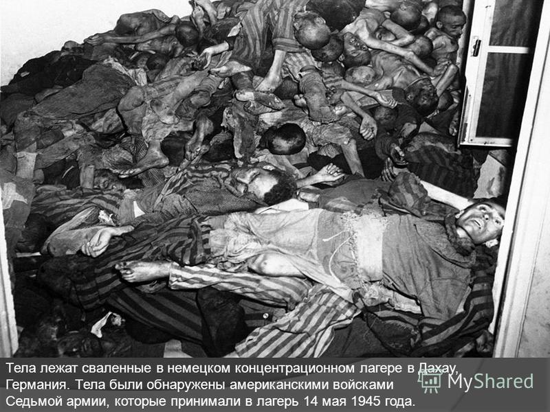 Тела лежат сваленные в немецком концентрационном лагере в Дахау, Германия. Тела были обнаружены американскими войсками Седьмой армии, которые принимали в лагерь 14 мая 1945 года.