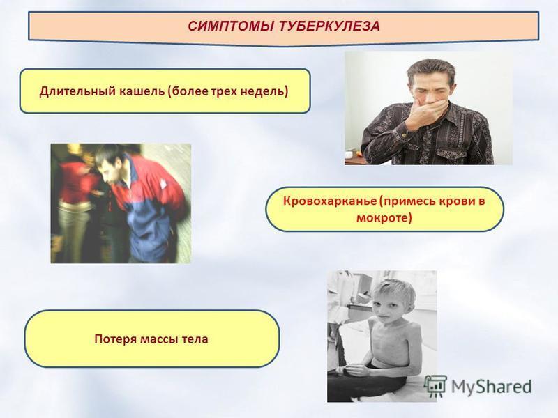 СИМПТОМЫ ТУБЕРКУЛЕЗА Длительный кашель (более трех недель) Кровохарканье (примесь крови в мокроте) Потеря массы тела