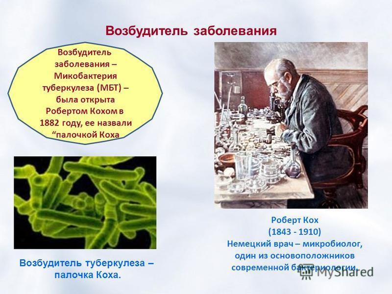 Возбудитель заболевания Возбудитель заболевания – Микобактерия туберкулеза (МБТ) – была открыта Робертом Кохом в 1882 году, ее назвали палочкой Коха Возбудитель туберкулеза – палочка Коха. Роберт Кох (1843 - 1910) Немецкий врач – микробиолог, один из