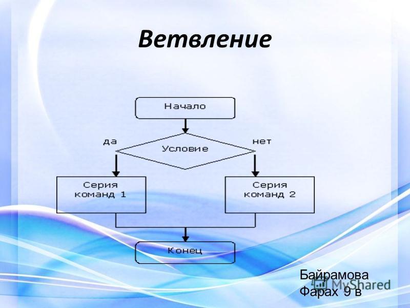 Ветвление Байрамова Фарах 9 в