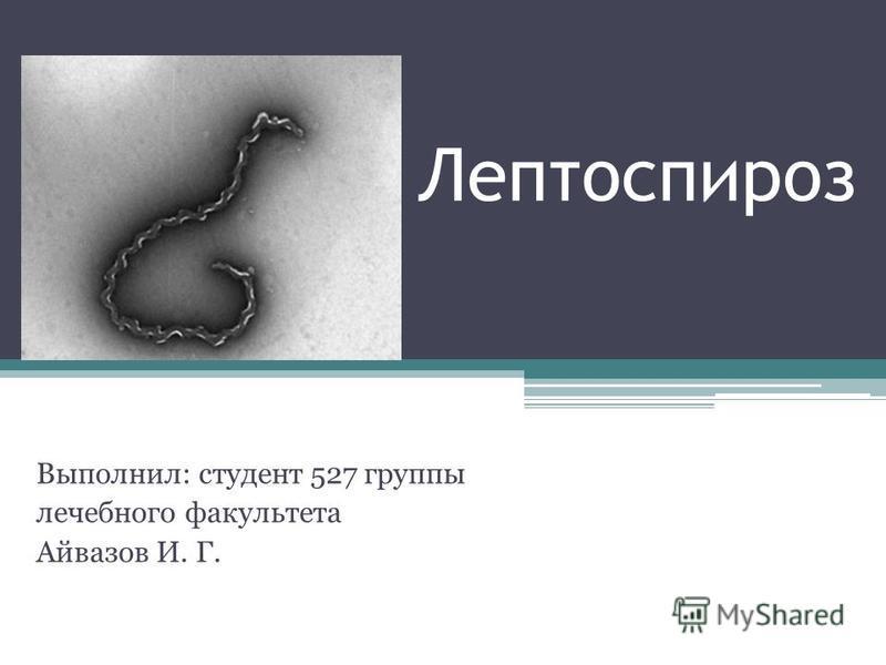 Лептоспироз Выполнил: студент 527 группы лечебного факультета Айвазов И. Г.