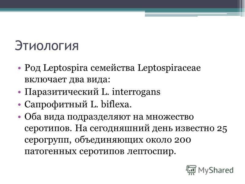 Этиология Род Leptospira семейства Leptospiraceae включает два вида: Паразитический L. interrogans Сапрофитный L. biflexa. Оба вида подразделяют на множество серотипов. На сегодняшний день известно 25 серогрупп, объединяющих около 200 патогенных серо