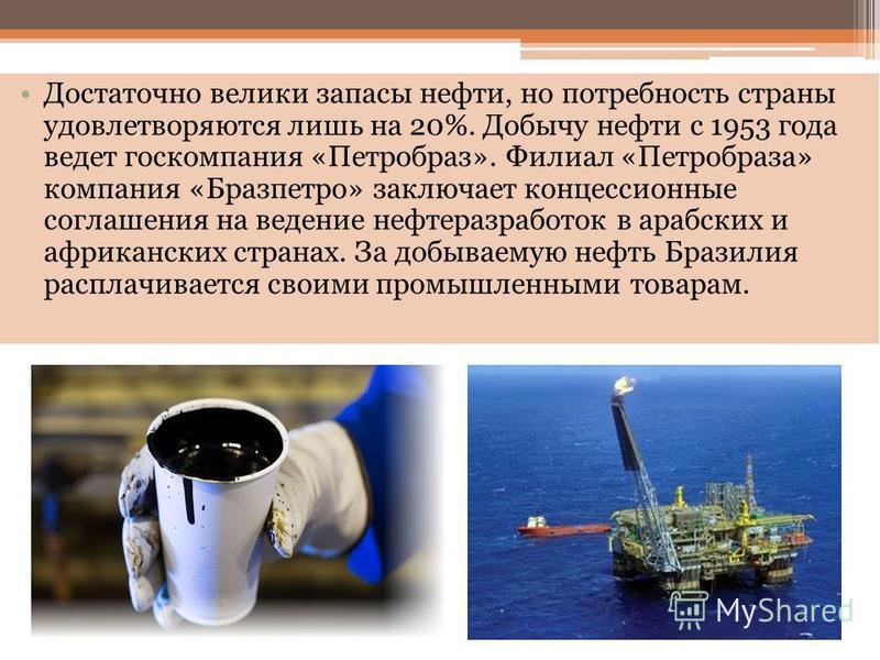 Достаточно велики запасы нефти, но потребность страны удовлетворяются лишь на 20%. Добычу нефти с 1953 года ведет госкомпания «Петробраз». Филиал «Петробраза» компания «Бразпетро» заключает концессионные соглашения на ведение нефть разработок в арабс