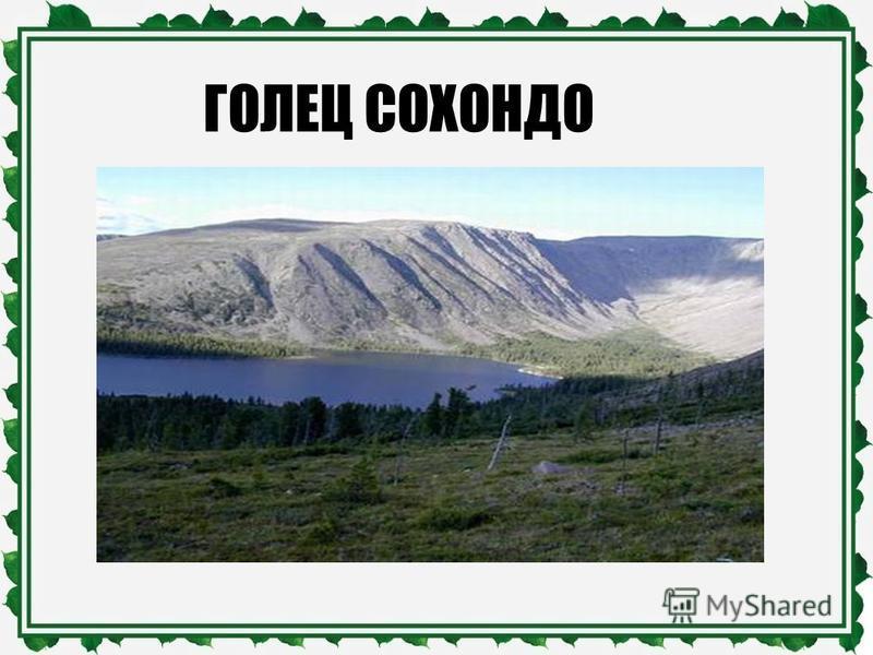 ГОЛЕЦ СОХОНДО