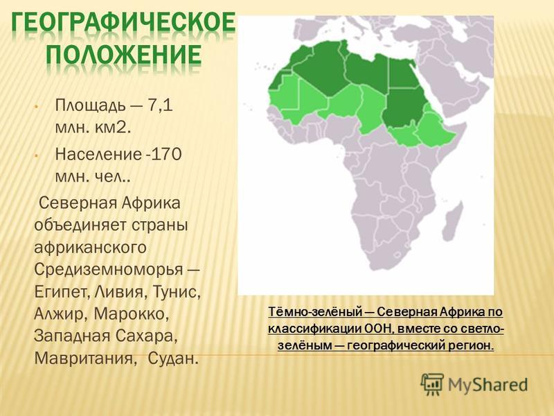 Площадь 7,1 млн. км 2. Население -170 млн. чел.. Северная Африка объединяет страны африканского Средиземноморья Египет, Ливия, Тунис, Алжир, Марокко, Западная Сахара, Мавритания, Судан. Тёмно-зелёный Северная Африка по классификации ООН, вместе со св