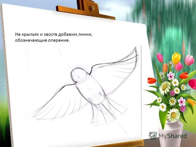 На крыльях и хвосте добавим линии, обозначающие оперение.