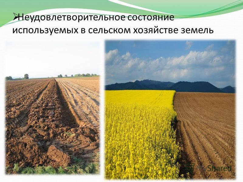 Неудовлетворительное состояние используемых в сельском хозяйстве земель