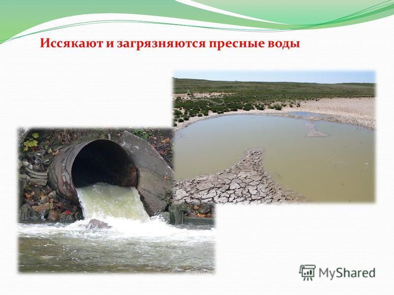 Иссякают и загрязняются пресные воды