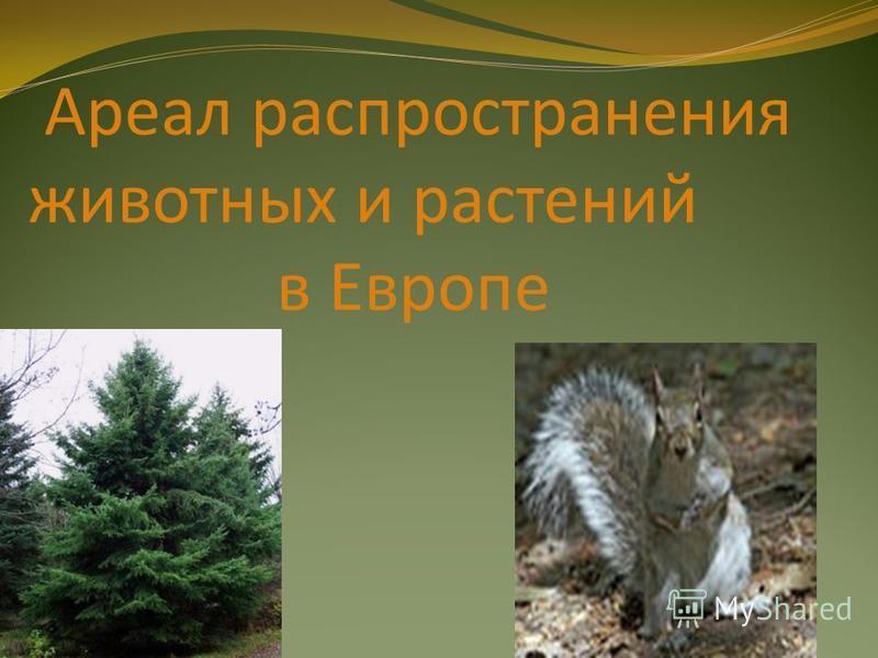 Ареал распространения животных и растений в Европе