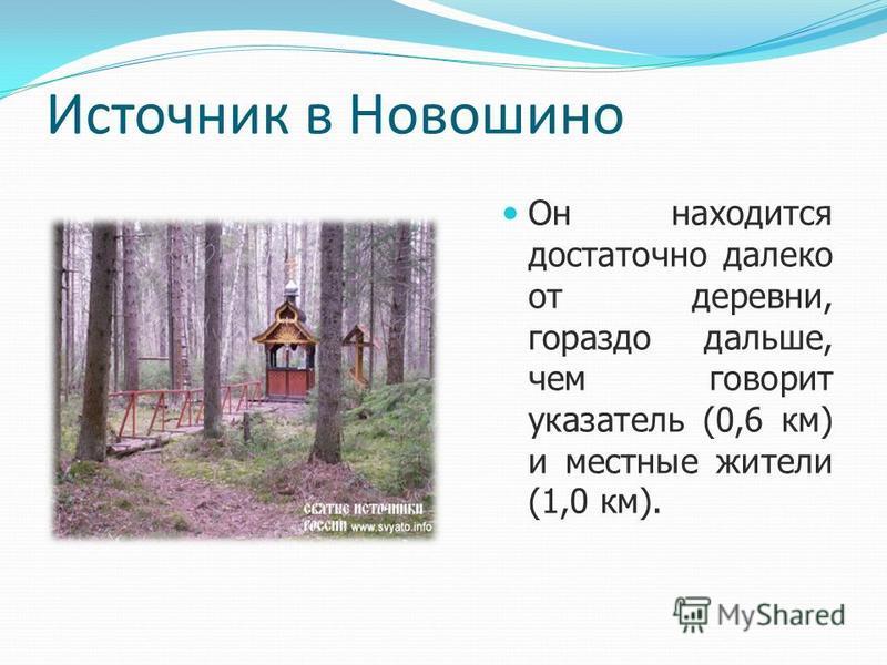 Источник в Новошино Он находится достаточно далеко от деревни, гораздо дальше, чем говорит указатель (0,6 км) и местные жители (1,0 км).