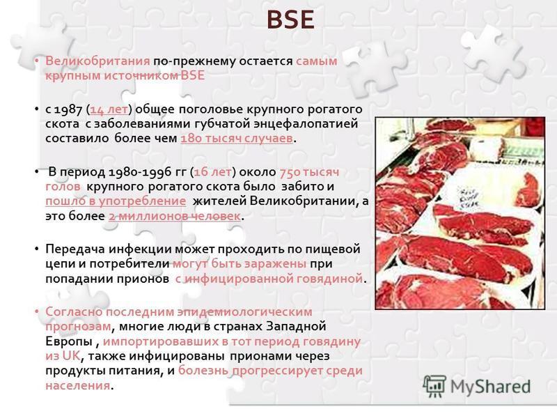 BSE Великобритания по-прежнему остается самым крупным источником BSE с 1987 (14 лет) общее поголовье крупного рогатого скота с заболеваниями губчатой энцефалопатией составило более чем 180 тысяч случаев. В период 1980-1996 гг (16 лет) около 750 тысяч