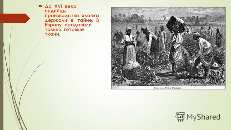 До XVI века индийцы производство хлопка держали в тайне. В Европу продавали только готовые ткани.