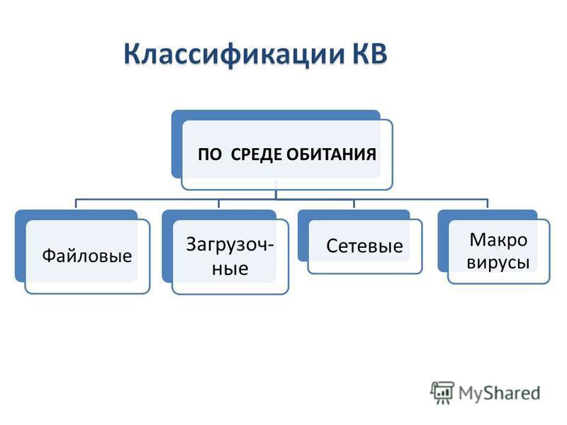 ПО СРЕДЕ ОБИТАНИЯ Файловые Загрузоч- ные Сетевые Макро вирусы