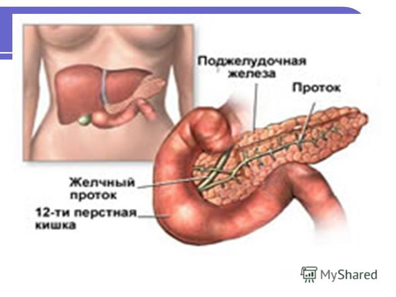 Народный рецепт лечения поджелудочной железы у ребенка