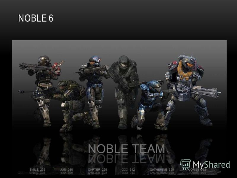 NOBLE 6