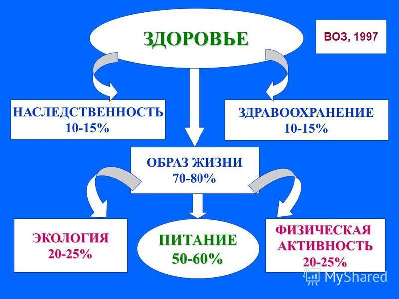 ЗДОРОВЬЕ НАСЛЕДСТВЕННОСТЬ 10-15% ОБРАЗ ЖИЗНИ 70-80% ЗДРАВООХРАНЕНИЕ 10-15% ПИТАНИЕ50-60%ЭКОЛОГИЯ20-25%ФИЗИЧЕСКАЯАКТИВНОСТЬ20-25% ВОЗ, 1997