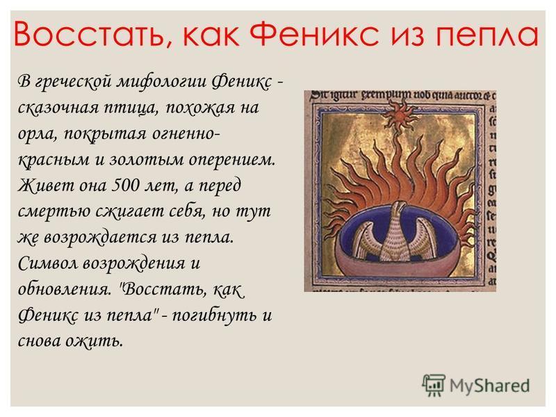 Восстать, как Феникс из пепла В греческой мифологии Феникс - сказочная птица, похожая на орла, покрытая огненно- красным и золотым оперением. Живет она 500 лет, а перед смертью сжигает себя, но тут же возрождается из пепла. Символ возрождения и обнов