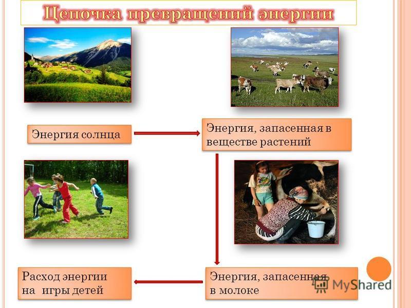 Энергия солнца Энергия, запасенная в веществе растений Энергия, запасенная в молоке Энергия, запасенная в молоке Расход энергии на игры детей Расход энергии на игры детей