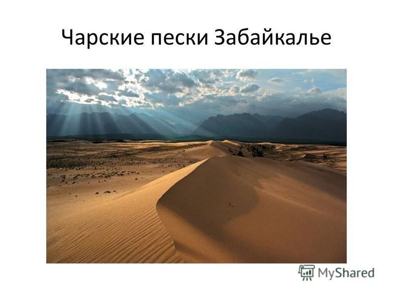 Чарские пески Забайкалье