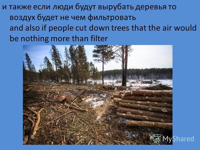 и также если люди будут вырубать деревья то воздух будет не чем фильтровать and also if people cut down trees that the air would be nothing more than filter