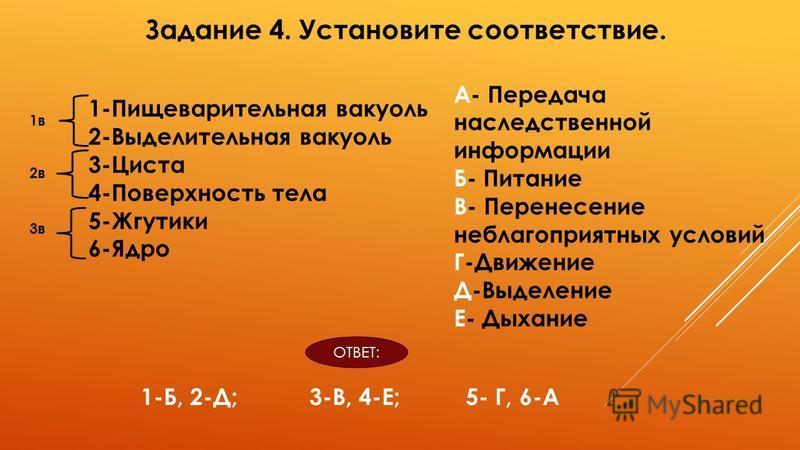 1-Пищеварительная вакуоль 2-Выделительная вакуоль 3-Циста 4-Поверхность тела 5-Жгутики 6-Ядро А- Передача наследственной информации Б- Питание В- Перенесение неблагоприятных условий Г-Движение Д-Выделение Е- Дыхание Задание 4. Установите соответствие