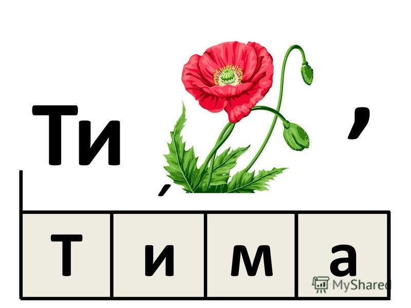 Тима, ˊ